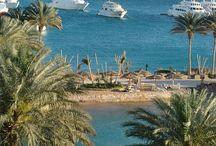 Egypt Paradise