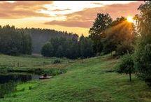 Siedlisko na Wygonie Mazury / o mazurskim siedlisku i o tym jak tu u nas pięknie