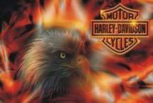 Bikes - Harley'Davidson°Custom'Bikes / Harleys
