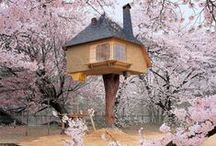 Architecture / Tree Houses / Handpicked and frequently updated collection of inspirational tree house projects from all over the world. // Take a look at my other design related boards for more inspiration on architecture, design and photography.