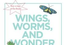 The Book: Wings, Worms, and Wonder / This board is a show case of illustrations from my new book: Wings, Worms, and Wonder: A Guide for Creatively Integrating Gardening and Outdoor Learning Into Children's Lives. This book provides holistic children's gardening information and lesson plans aimed at inspiring wonder grown from nature combined  with full color paintings, by me, to inspire the reader to get outside and creatively connect to the natural world with the children in their life. Enjoy!