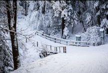 Nasze trasy - ZIMA / Our cross-country ski trails - WINTER