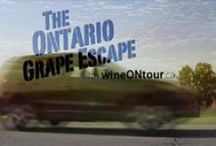 """Wine ON Tour / We are proud to grow grapes for the Ontario wines you love.  Grape Growers of Ontario has launched our new Ontario wine route-planner…wineONtour.ca… Use wineOntour.ca to create your journey to tour, enjoy and share your Ontario wine experiences.   Find """"info"""" on wine styles, varieties, appellations, and what to expect at a wine tasting.   We made maps a lot better to help you enjoy your Ontario wine experience!  Please drink responsibly and tour with a designated driver…don't drink and drive.    / by Grape Growers of Ontario Growers of Ontario"""