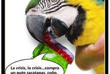 La crisis en imágenes / Imágenes comentadas a modo de tiras cómica o memes sobre la dura crisis que azota éste siglo XXI