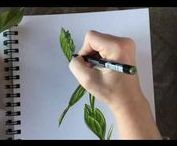 Free Art Tutorial Videos / Learn lots of nature journaling techniques from painting to drawing to choosing supplies to journal making & more the Wings, Worms, and Wonder way!!