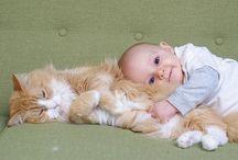 cute!!!!!! / Cute stuff -animals,babies....etc...;p