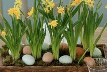 Easter - påske / Påskestemning