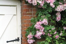 Garden Gates, Arbors, & Entries / The door to another world.