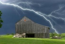 """Barns / """"If a farmer fills his barn with grain, he gets mice. If he leaves it empty, he gets actors."""" Sir Walter Scott"""
