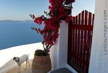° Greece °