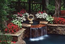 Landscaping Ideas / Wow how did they do that?  Ever see a photo and want to emulate it.. front yard, back yard, window boxes, pools, drive ways, curbs, flower beds... Look here.