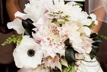 Wedding ideas / by Hannah Poe