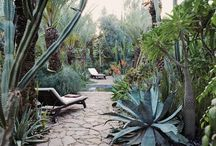 Places & spaces / Wanderlust / by Alexandra Zhovtenko