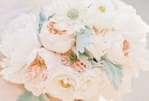 Beautiful Bouquets / Flowers, Flowers and more Flowers