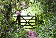 zahradní branky, brány