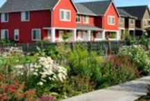 Sustainable Landscaping Resources