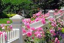 Projekty ogrodowe / Pomysły, jak urządzić ogród.