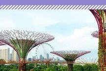 Cestování - Singapur