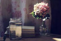 Hydrangeas / by Victoria Charters