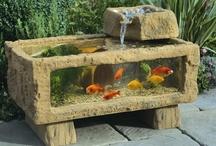 Water Gardening / by B Barlup