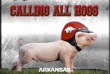 Razorback Country / Razorbacks rule!