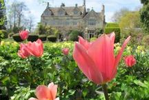 Spring / Time to throw open the doors and windows at Barnsley House. The garden revives with snowdrops in The Wilderness, winter aconites, crocuses, daffodils and then tulips. Spring vegetables start to feature on our menus in The Potager Restaurant and The Village Pub and the Terrace is reclaimed on warmer days.