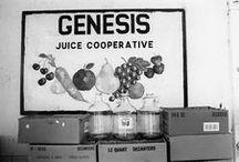 Genesis Love / Our beloved juice, teas, and lemonades in the news