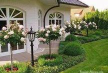 Szép kertek,bokrok,faházak,és házak:)