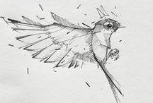 Sketching / Sketching tutorials and inspiration / by MOJO/