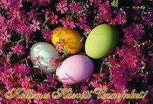 Húsvéti képek:)