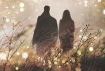 bittersüße Bücher / Liebesgeschichten, zum Sterben schön: Tauche ein in die Welt von Bella und Edward, flüchte mit Rosa und Alessandro vor der Mafia, hilf Fire, die 7 Königreiche zu retten oder kämpfe für die Liebe mit Lena und Alex. Aber sei gewarnt: die Sehnsucht kann auch dir gefährlich werden ...