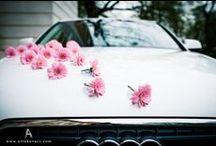 ślub - dekoracje na samochód