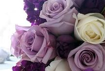 Colour the world purple
