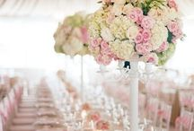 Wedding Theme/Ideas