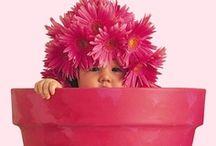 pink / by creajettie
