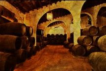 Spanish Red Wines