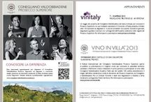 Conegliano Valdobbiadene Academy / Welcome to the first course offered by the Conegliano Valdobbiadene Academy, a course designed for all those who want to improve their knowledge of the characteristics that make this denomination unique and of superior quality