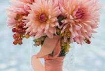 Dahlia ideas for bouquets / by Dahlia Barn