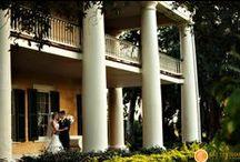 Weddings / Weddings at Houmas