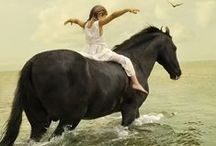 Horses / Horses Pics.