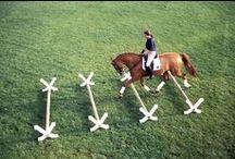 Equestrian exercice