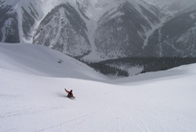 Riding / People sliding down snow covered mountains while strapped (or not) to Venture boards. / by Venture Snowboards