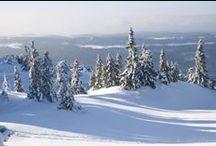 Snow / Ce tableau contient des clichés des Montagnes du Jura sous la neige