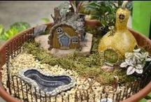 Fairy Gardens / Miniture  Gardens