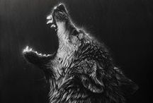Wolves / Anything wolf related we find on Pinterest that we enjoy.