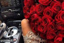 Roses / by Rubi Arteaga
