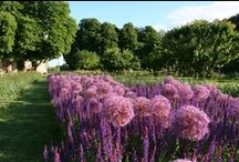 Gardens of the Loire Valley / The Loire Valley is known as the garden of France and it has a lot of hidden gems to make you discover... With Renaissance inspiration, those French gardens will enthrall you.
