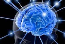 Filosofia - Psicologia e mente umana / Studio del comportamento ed atteggiamenti degli esseri viventi