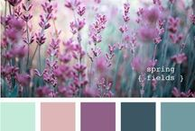 Colors & Palettes