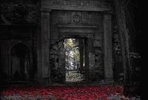 Fantastical Worlds and Gateways / by B.C. Morin